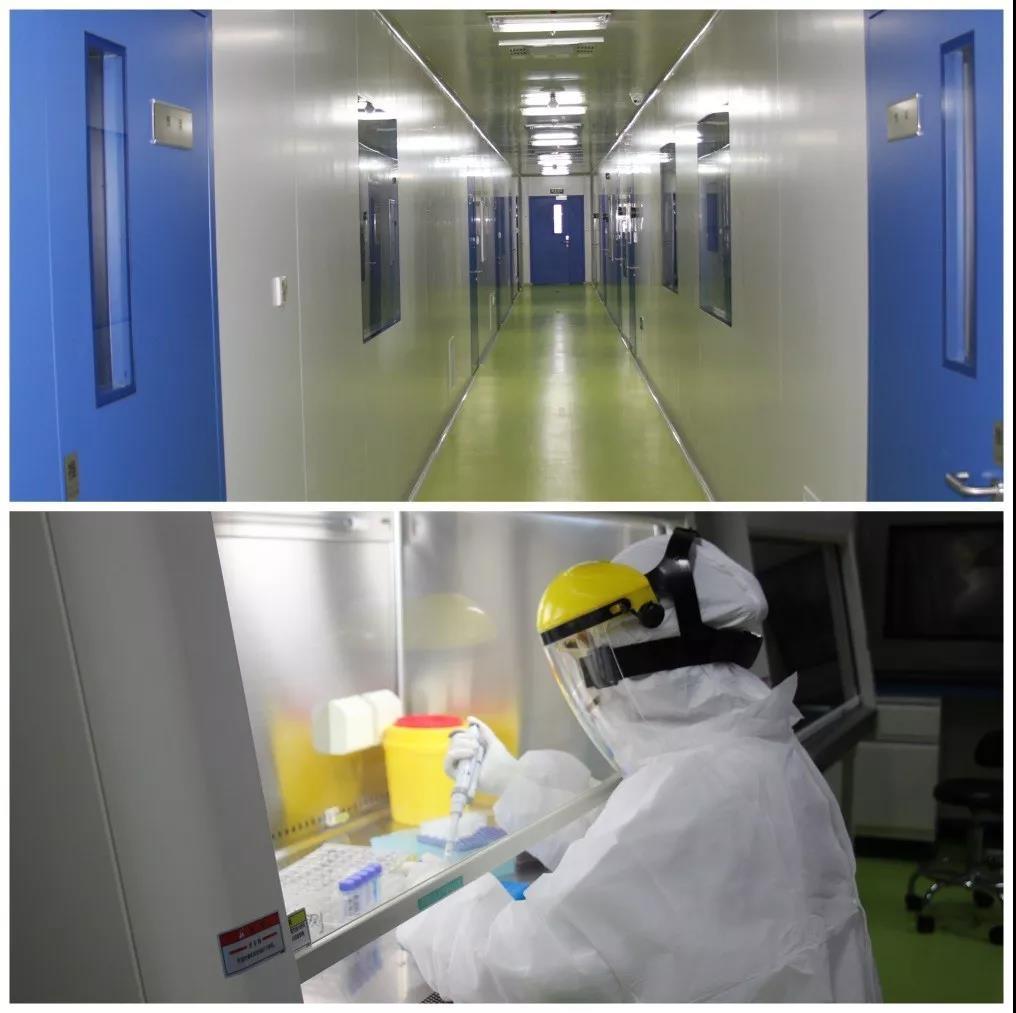 双迪晶泰基因助力新冠病毒检测,降低复工风险!